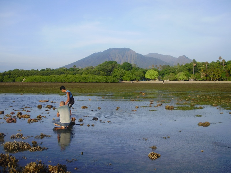 Fishing in Baluran