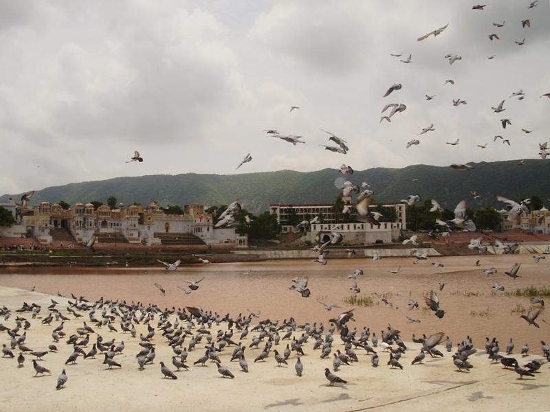 Ghats in Pushkar