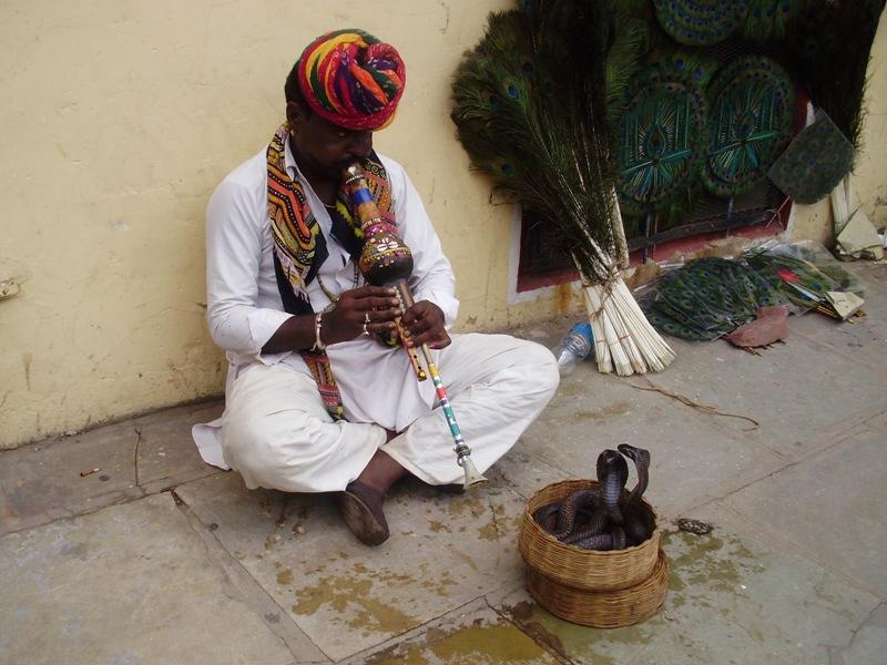 Cobra dance, Jaipur