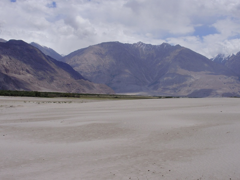 sand dunes in nubra valley