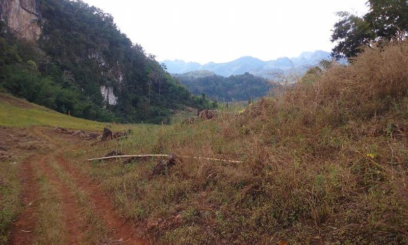 trek in Thailand