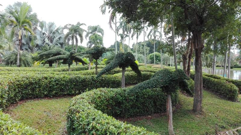 Tweechol Botanical Garden in Chiang Mai