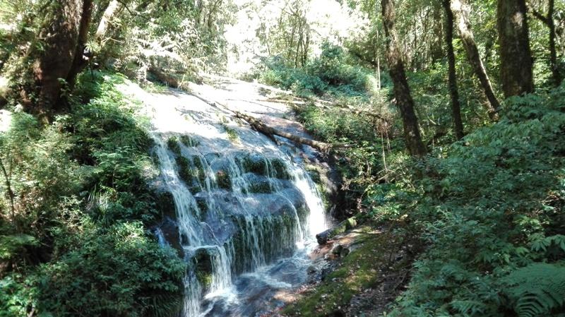 Nature trail Mae Pan