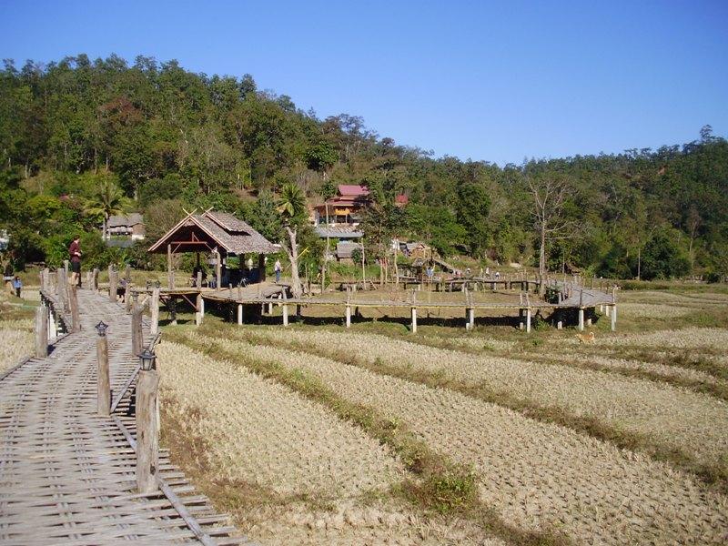 Bamboo bridge, Pai